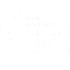 Gartner Peer Insight award icon
