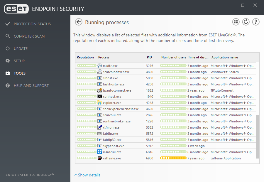ESET Endpoint Security for Windows - Tools/Running Processes