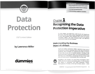 Data protection for dummies brochure