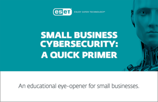 Small business cybersecurity: A quick primer